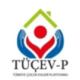 Türkiye Çocuk Evleri Platformu /TÜÇEV-P